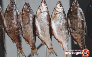 Как сушить рыбу в домашних условиях самостоятельно