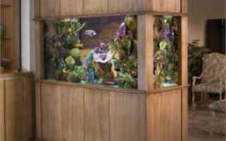 Как избавиться от запаха из аквариума с рыбками: несколько способов убрать зловоние