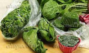 Как заморозить шпинат на зиму в домашних условиях, сколько хранить в морозилке, холодильнике