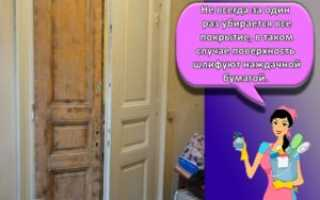 Сверчок в доме: как вывести и избавиться от беспокойного квартиранта?