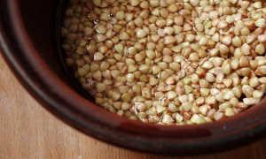 Как прорастить зеленую гречку и чем она полезна?