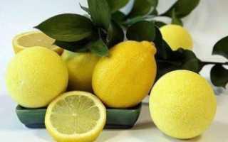 Как хранить лимоны в домашних условиях – традиционные и оригинальные методики