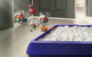 Как и чем мыть кошачий лоток, чтобы в квартире не пахло, чем лучше дезинфицировать
