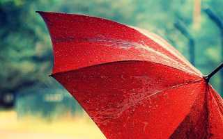 Как постирать зонтик в домашних условиях правильно