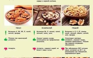 Как хранить орехи в домашних условиях – особенности очищенных и в скорлупе